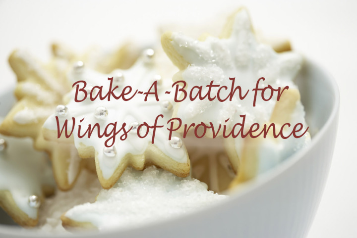 Bake-A-Batch for Wings of Providence